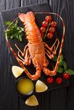 Expensive food: spiny boiled lobster with fresh tomato, lemon an. D melted butter close-up on black stone. Vertical top view from above royalty free stock image