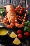 Expensive food: spiny boiled lobster with fresh tomato, lemon an. D melted butter close-up on black stone. vertical stock images