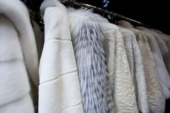 Expensive fur coats for women. On coat-hanger royalty free stock image