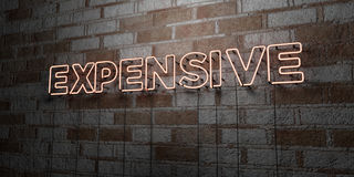 EXPENSIVE - Glowing Neon Sign on stonework wall - 3D rendered royalty free stock illustration. Can be used for online banner ads and direct mailers Stock Photo