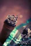Expensive hand-rolled cigar on a while background Royalty Free Stock Image