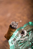 Expensive hand-rolled cigar on a while background Royalty Free Stock Images