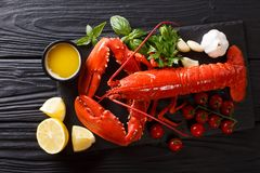 Expensive organic food: boiled lobster with lemon, garlic, fresh. Tomatoes and herbs close-up on a black table. Horizontal top view from above stock photos