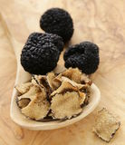 Expensive rare black truffle mushroom Stock Photography