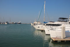Expensive white yachts and boats are in the port Royalty Free Stock Photography
