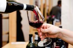 Experiência da degustação de vinhos de Barolo fotografia de stock