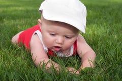 Experiência da grama do bebê primeira Fotos de Stock