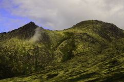 Experience Alaska Royalty Free Stock Photo