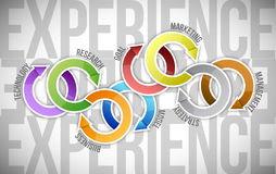 Experience cycle illustration design Stock Image