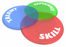 Experience Talent Skill Venn Diagram Circles. 3d Illustration stock illustration