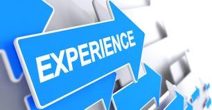 Experience - Text on Blue Arrow. 3D. Stock Photo