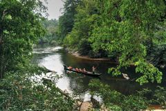 KUALA KOH. Experience trekking through undisturbed tropical rainforest and fishing in the tranquil forest rivers, the Kelantan entrance to Taman Negara at Kuala royalty free stock photos