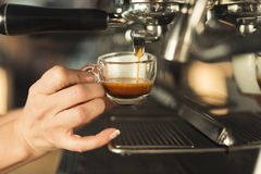 Closeup of barmen hand brewing espresso in professional coffee machine. Experienced barman making espresso in modern coffee machine. Closeup of female hand royalty free stock photography