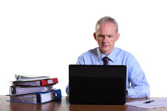 Experienced businessman working on his laptop Stock Photos