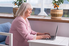 Experienced businesswoman doing her job Stock Images