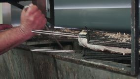 Experienced cook grilling delicious fish stock video footage