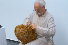 Experienced craftsman weaves a basket of willow vine, final touch, Ukrainian ethnic traditional weaving. Experienced craftsman weaves a basket of willow vine royalty free stock photo