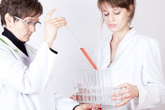 Experienced Doctor experimenting. Experienced Doctor holding flask on white stock photography