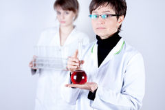 Experienced Doctor with Flask. Experienced Doctor holding flask on white royalty free stock image