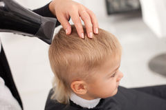 Experienced Female Barber Is Making Hairstyle To Stock Photos