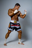 An experienced fighter kickboxer in a fighting stance. Royalty Free Stock Photos