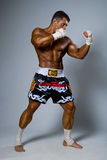 An experienced fighter kickboxer in a fighting stance. Royalty Free Stock Image