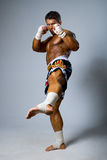An experienced fighter kickboxer with a raised foot. Full height stock photography