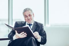 Experienced lawyer reviews the documents with the terms of a new contract. Sitting on the sofa in the private office royalty free stock photography