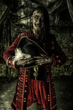 Experienced pirate. Portrait of a noble brave dead pirate. Zombie pirate. Halloween Stock Images