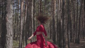 Experienced pretty young woman in red dress dancing in the forest. Beautiful dancer dancing contemporary between the stock video footage