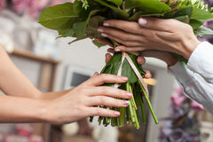 Experienced saleswoman is selling flowers in shop Stock Photography