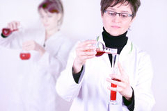 Experienced Scientist Experimenting. Experienced Doctor experimenting with flasks on white royalty free stock photo