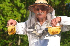 Experienced senior beekeeper holding honeycombs fr Stock Image