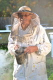 Experienced senior beekeeper making inspection and swarm of bees Royalty Free Stock Photo