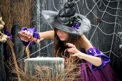 An experienced sorceress poured into a cauldron. A potion from a bottle royalty free stock photos