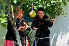Experiencia auténtica y local en el pueblo de Visina, Rumania foto de archivo libre de regalías