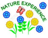 Experiencia de la naturaleza Imagen de archivo libre de regalías