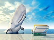 Experiencia del día de fiesta con la ballena blanca Foto de archivo libre de regalías
