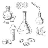 Experiment and scientific sketch icons Royalty Free Stock Image