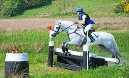 Experimentação de cavalo de Scotsburn Fotografia de Stock Royalty Free