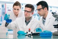 Experimentação dos cientistas no laboratório de investigação Fotografia de Stock Royalty Free