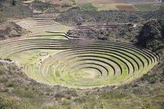 Experimental plots of the Incas, Moray Maras Stock Photo