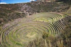 Experimental plots of the Incas, Moray Maras Stock Photos