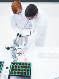 Experimental studies in a chemistry lab Stock Images
