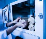 Experimentator in de media die van de cabine microbiologische cultuur wordt overgegaan Stock Foto