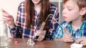 Experimente auf Chemie zu Hause Junge und seine Mutter erhitzen das Reagenzglas mit blauer Flüssigkeit auf brennender Alkohollamp stock video