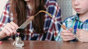 Experimente auf Chemie zu Hause Junge und seine Mutter erhitzen das Reagenzglas mit blauer Flüssigkeit auf brennender Alkohollamp stock video footage