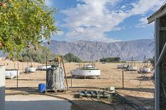 Experimenteller Landwirtschafts-Bauernhof in der Arava-Wüste lizenzfreies stockbild