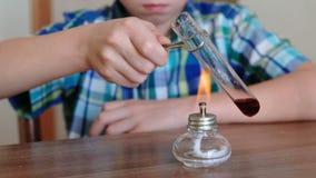 Experimenten op chemie thuis De handen van de close-upjongen ` s verwarmt de reageerbuis met rode vloeistof bij het branden van a stock video