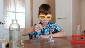 Experimenten op chemie thuis De jongen verwarmt de reageerbuis met rode vloeistof bij het branden van alcohollamp stock videobeelden